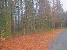 Terrain à vendre à Stukely-Sud, Estrie, Chemin  Aline, 25854982 - Centris