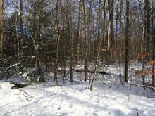 Lot for sale in Brownsburg-Chatham, Laurentides, Chemin de la Montagne, 22896007 - Centris