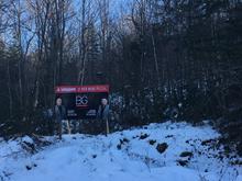 Terrain à vendre à Saint-Alexis-des-Monts, Mauricie, 2018, Chemin du Lac-des-Pins-Rouges, 26657049 - Centris