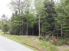 Lot for sale in Eastman, Estrie, Rue de Ville-Bois, 19610441 - Centris