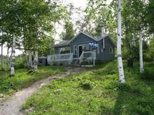 Maison à vendre à Rouyn-Noranda, Abitibi-Témiscamingue, 1, Lac-Opasatica, 15057798 - Centris