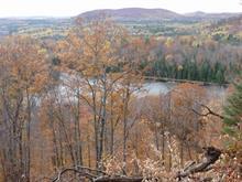 Terre à vendre à Alleyn-et-Cawood, Outaouais, Route  301, 15489148 - Centris