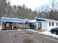 Bâtisse commerciale à vendre à Denholm, Outaouais, 888, Chemin du Poisson-Blanc, 12601770 - Centris