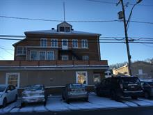Income properties for sale in La Malbaie, Capitale-Nationale, 358 - 360, Rue  Saint-Étienne, 24322934 - Centris