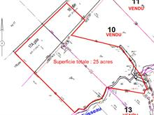 Lot for sale in Saint-Donat, Lanaudière, Chemin de la Chute, 10040235 - Centris