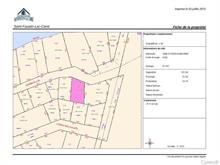 Terrain à vendre à Saint-Faustin/Lac-Carré, Laurentides, Chemin  M.-J.-M., 28873397 - Centris