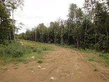 Land for sale in Saint-Jean-de-Matha, Lanaudière, Rang  Saint-Léon, 28815650 - Centris