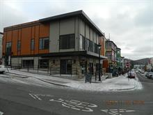 Commercial building for rent in Sainte-Agathe-des-Monts, Laurentides, 81 - A, Rue  Saint-Vincent, 27397335 - Centris