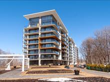 Condo / Apartment for rent in Saint-Augustin-de-Desmaures, Capitale-Nationale, 4957, Rue  Lionel-Groulx, apt. 420, 12614584 - Centris