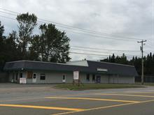 Commercial building for sale in Stoneham-et-Tewkesbury, Capitale-Nationale, 2715 - 2717, boulevard  Talbot, 25237696 - Centris