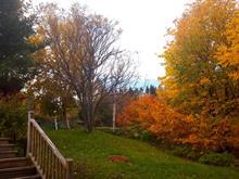 House for sale in Sainte-Anne-des-Monts, Gaspésie/Îles-de-la-Madeleine, 212, Route  Lavoie, 10437421 - Centris