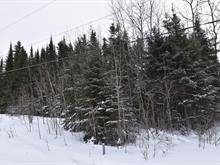 Terre à vendre à Rapide-Danseur, Abitibi-Témiscamingue, Route  388, 16950331 - Centris