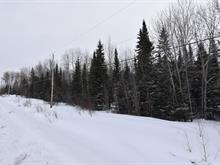 Terrain à vendre à Rapide-Danseur, Abitibi-Témiscamingue, Route  388, 16323308 - Centris
