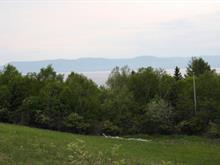 Terrain à vendre à New Richmond, Gaspésie/Îles-de-la-Madeleine, 9999, Route  132 Est, 17047997 - Centris