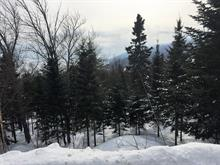 Lot for sale in Petite-Rivière-Saint-François, Capitale-Nationale, Chemin  Savard, 26427316 - Centris