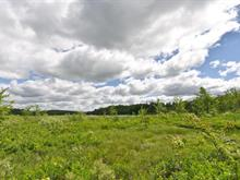 Land for sale in Austin, Estrie, 24, Chemin  Galvin, 21319523 - Centris