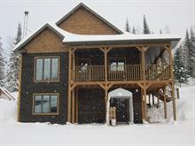 Maison à vendre à Saint-David-de-Falardeau, Saguenay/Lac-Saint-Jean, 91, Rang des Hirondelles, 14773329 - Centris