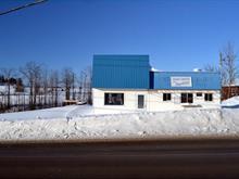 Commercial building for sale in Saint-Patrice-de-Beaurivage, Chaudière-Appalaches, 452, Rue  Principale, 24907424 - Centris