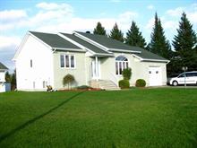 Maison à vendre à Saint-André-Avellin, Outaouais, 373, Rang  Sainte-Julie Est, 28794935 - Centris