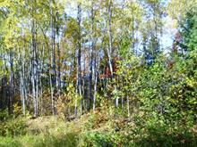 Lot for sale in Mont-Saint-Michel, Laurentides, Chemin du Tour-du-Lac-Gravel, 21978019 - Centris