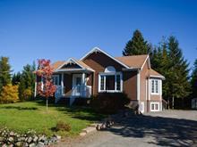 House for sale in Saint-Faustin/Lac-Carré, Laurentides, 250 - 252, Rue des Villageois, 12152052 - Centris