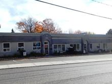 Commercial building for sale in Sainte-Agathe-des-Monts, Laurentides, 195 - 201, Rue  Saint-Vincent, 11437479 - Centris