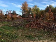 Lot for sale in Shawinigan-Sud (Shawinigan), Mauricie, Rue du Prieuré, 18949389 - Centris