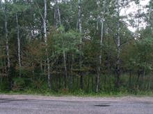 Lot for sale in Chute-Saint-Philippe, Laurentides, Chemin des Lacs, 24470885 - Centris