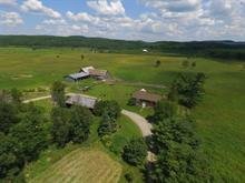 Farm for sale in Pontiac, Outaouais, 6810, Chemin  Hickey, 13006625 - Centris