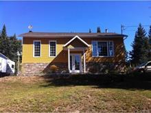 Maison à vendre à Lac-Saguay, Laurentides, 55, Chemin du Lac-Allard, 25973123 - Centris