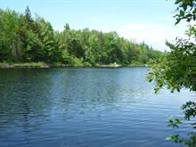 Terrain à vendre à Lac-aux-Sables, Mauricie, 990, Chemin du Lac-Veillette, 20074072 - Centris
