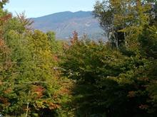 Terrain à vendre à Mont-Tremblant, Laurentides, Chemin des Hauteurs, 25206854 - Centris