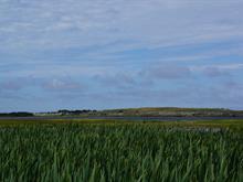 Terre à vendre à Grosse-Île, Gaspésie/Îles-de-la-Madeleine, Île aux Loups, 23417511 - Centris