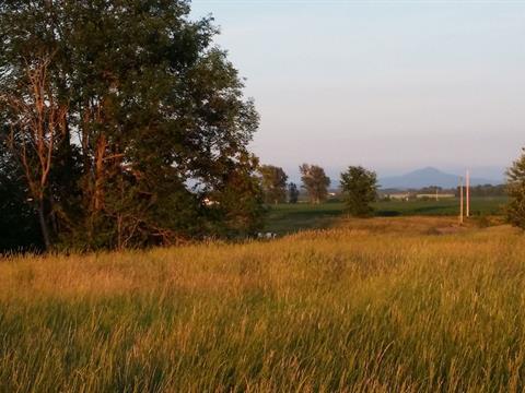 Terrain à vendre à Pike River, Montérégie, Rang des Ducharme, 23094468 - Centris