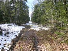 Terrain à vendre à Sainte-Adèle, Laurentides, Chemin du Lac-Pilon, 27350663 - Centris