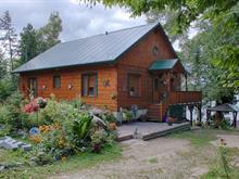 Maison à vendre à Duhamel, Outaouais, 3146, Chemin des Îles, 21848613 - Centris