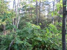 Terre à vendre à Saint-Ambroise, Saguenay/Lac-Saint-Jean, 2, Rang  Ouest, 20193652 - Centris