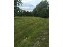 Lot for sale in Laterrière (Saguenay), Saguenay/Lac-Saint-Jean, Rue des Saules, 24858327 - Centris