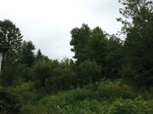 Terrain à vendre à Cayamant, Outaouais, 69, Chemin de la Montagne, 19687378 - Centris