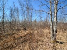 Lot for sale in Disraeli - Ville, Chaudière-Appalaches, Route du 3e Rang, 13990707 - Centris
