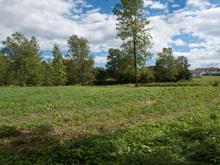 Terrain à vendre à L'Islet, Chaudière-Appalaches, Chemin des Pionniers Ouest, 9621554 - Centris