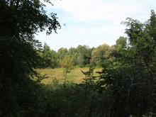 Lot for sale in Hudson, Montérégie, Rue d'Alstonvale, 27042755 - Centris