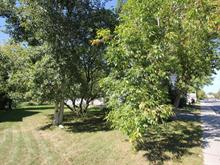 Lot for sale in Saint-Constant, Montérégie, Rue  Saint-Pierre, 10216465 - Centris