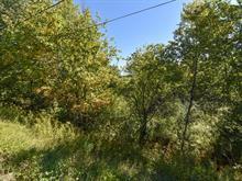 Land for sale in Saint-François-Xavier-de-Brompton, Estrie, Chemin de la Rivière, 9575710 - Centris