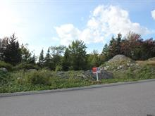 Lot for sale in Jacques-Cartier (Sherbrooke), Estrie, Rue du Chardonnay, 28781873 - Centris