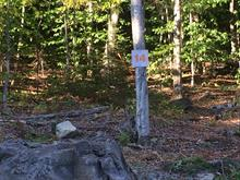 Lot for sale in Sainte-Adèle, Laurentides, Rue du Gai-Luron, 10773011 - Centris