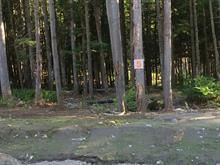 Terrain à vendre à Sainte-Adèle, Laurentides, Rue du Gai-Luron, 26959317 - Centris