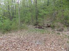 Lot for sale in Montpellier, Outaouais, 128, Chemin de la Baie-de-l'Ours, 22672233 - Centris
