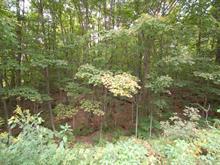 Terrain à vendre à Wentworth, Laurentides, Chemin  Joseph, 14845791 - Centris