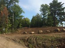 Lot for sale in Mandeville, Lanaudière, Ancien ch. du Lac-Sainte-Rose, 14796283 - Centris